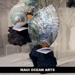Maui Ocean Arts